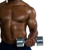 行使与哑铃的肌肉运动员的中间部分 免版税图库摄影