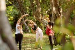 行使与孕妇的瑜伽辅导员在公园 免版税库存照片