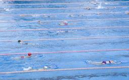 行使游泳在水池的孩子 免版税图库摄影