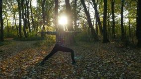 行使瑜伽的年轻健康妇女在秋天森林,通过森林晒黑发光 影视素材