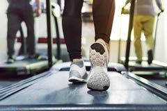 行使踏车心脏连续锻炼在采取与机器的妇女健身健身房减重有氧为微小和牢固的健康 免版税库存照片