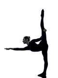 行使Natarajasana舞蹈家姿势瑜伽剪影的妇女 免版税库存照片