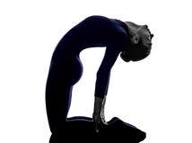 行使Ustrasana骆驼姿势瑜伽剪影的妇女 免版税库存照片