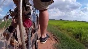 行动凸轮观点的一个骑自行车者在通过一条母牛、泥泞的轨道和一个孩子在这条未铺砌的农村路的农村亚洲在亚洲 股票录像