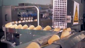 行动完成的冰淇凌杯子的过程沿传送带的 影视素材