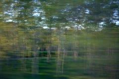 行动的森林 库存照片