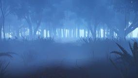 行动通过有薄雾的夜森林 库存例证