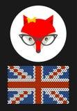 行家与英国旗子的夫人狐狸 免版税图库摄影