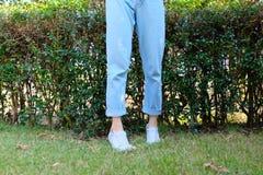 行家偶然白色运动鞋 女性站立的佩带的白色鞋子和蓝色牛仔裤裤子在绿草自然背景 免版税库存照片