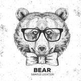行家动物熊 手动物狗图画枪口  皇族释放例证