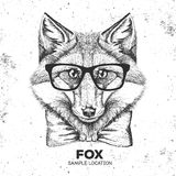 行家动物狐狸 手动物狐狸图画枪口  库存例证