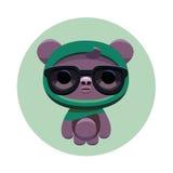 行家熊 免版税库存图片