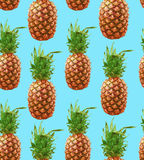 行家菠萝无缝的样式背景 库存照片