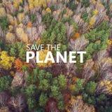 行星保存 鸟瞰图forrest与另外颜色 免版税图库摄影