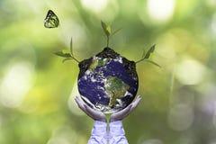行星和树在人移交绿色自然生态,保存地球概念 免版税库存图片