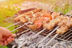 行肉片在串的在格栅露天被烤 库存图片