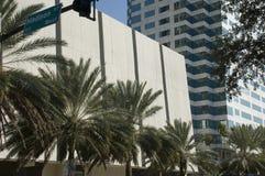 街市佛罗里达坦帕 免版税库存照片