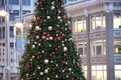 街市圣诞树 免版税库存照片