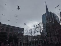 街市教会 库存照片