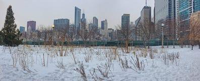 街市芝加哥在冬天期间在一惨淡的天 图库摄影