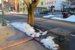 街市边路、树和长凳 免版税库存图片