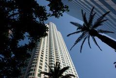 街市洛杉矶摩天大楼-加利福尼亚 免版税库存图片