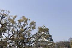 街灯和日本杉木在大阪城堡在日本在一好日子 库存照片