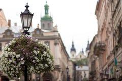 街灯在老镇 库存图片