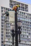 街灯维护  免版税库存图片
