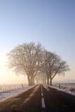 街道到冬天里 库存照片