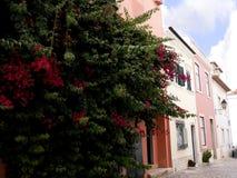 街道和典型的房子在卡斯卡伊斯葡萄牙 免版税库存图片