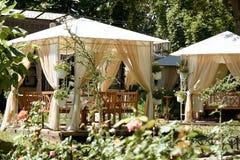 街道咖啡馆内部在绿色城市公园,华丽与花,夏季,明亮的晴天,变褐定调子 免版税库存照片