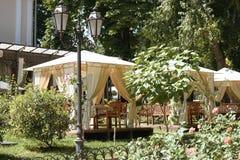 街道咖啡馆内部在绿色城市公园,华丽与花,夏季,明亮的晴天,变褐定调子 免版税库存图片