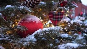街道圣诞树 圣诞节球、诗歌选和装饰在云杉的树 影视素材