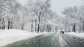 街道在中央公园 免版税库存照片