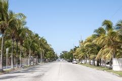 街道在基韦斯特岛 库存照片