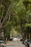 街道在墨西哥城 免版税库存图片
