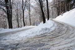 街道在有雪的,瓦雷泽森林里 免版税库存图片
