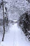 街道在用雪包括的一个小的村庄冬天 库存图片