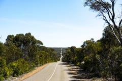 街道在碎片追逐国家公园,坎加鲁岛,澳大利亚 免版税库存图片