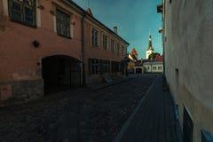 街道在老镇塔林 免版税库存照片