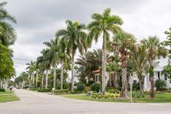 街道在那不勒斯,佛罗里达,美国 库存照片