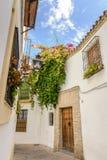 街道在Andalucia,南西班牙一个白色村庄 免版税库存图片