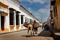 街道在Mompos,哥伦比亚 免版税库存图片