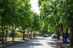 街道在Talca 免版税库存图片
