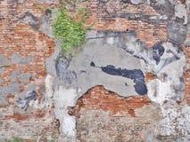 街道墙壁上的标题`真正的李小龙不会做这` 库存照片