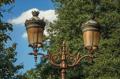街道照明特写镜头在叶茂盛树和晴朗的蓝天中的在巴黎 免版税图库摄影