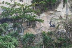 街道画在纪念古巴革命的农村古巴 库存照片
