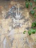 街道画绘的掠食性动物 库存图片