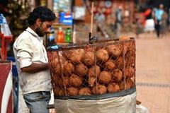 街道的椰子卖主 库存照片